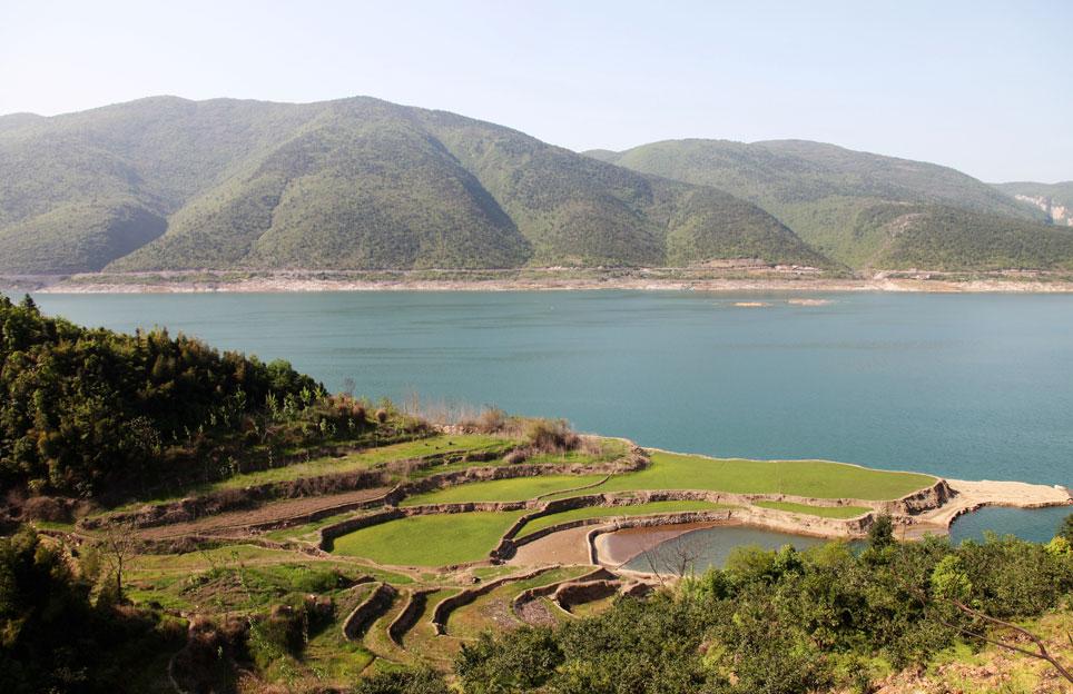 Anbaugebiet der traditionellen chinesischen Medizin aus der Markus Apotheke